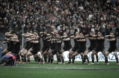 Rugby Test Match between Italy and All Blacks in Rome - haka